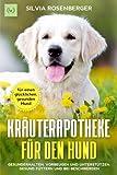 Kräuterapotheke für den Hund: Gesunderhalten, vorbeugen und unterstützen. Gesund...