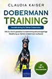 Dobermann Training – Hundetraining für Deinen Dobermann: Wie Du durch gezieltes...