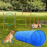 X XBEN Agility Ausrüstungs Set für Hunde, Hindernisse mit Hundetunnel,Geflochtene...
