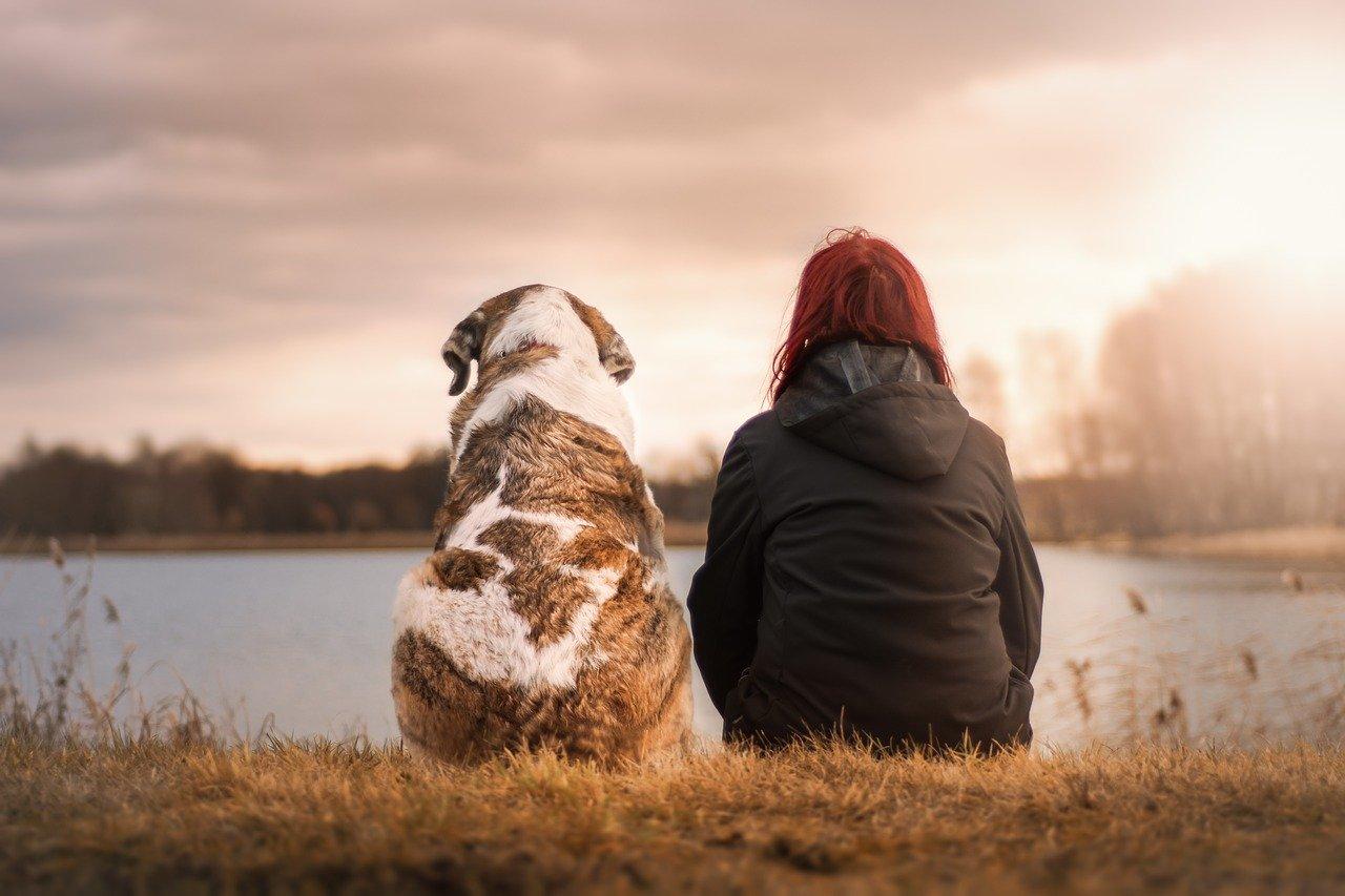 pflegeleichte-hunderasse-und-halterin-freundschaft