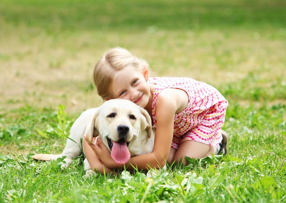 Arthrose bei Hunden